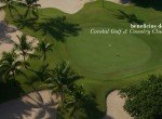 beneficion cocotal golf